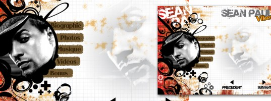 Interface cdrom Sean Paul
